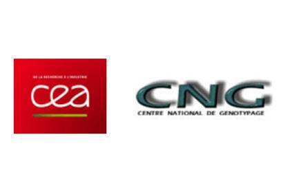 CEA CNG